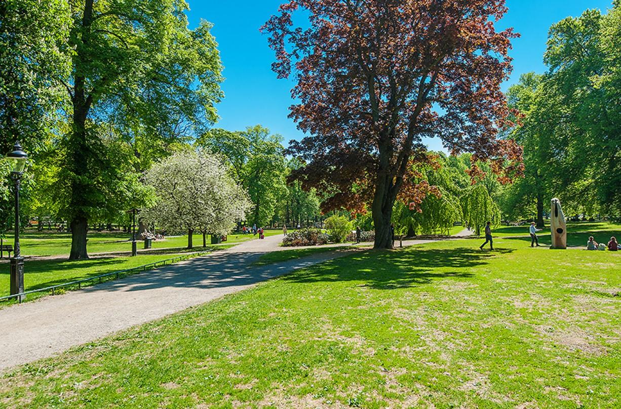 Humlegården och dess grönska Drottninghusgränd 2