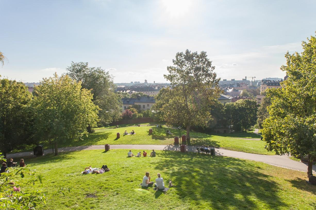 Sommartid är detta parken att hänga i Bondegatan 74A, vindsetage