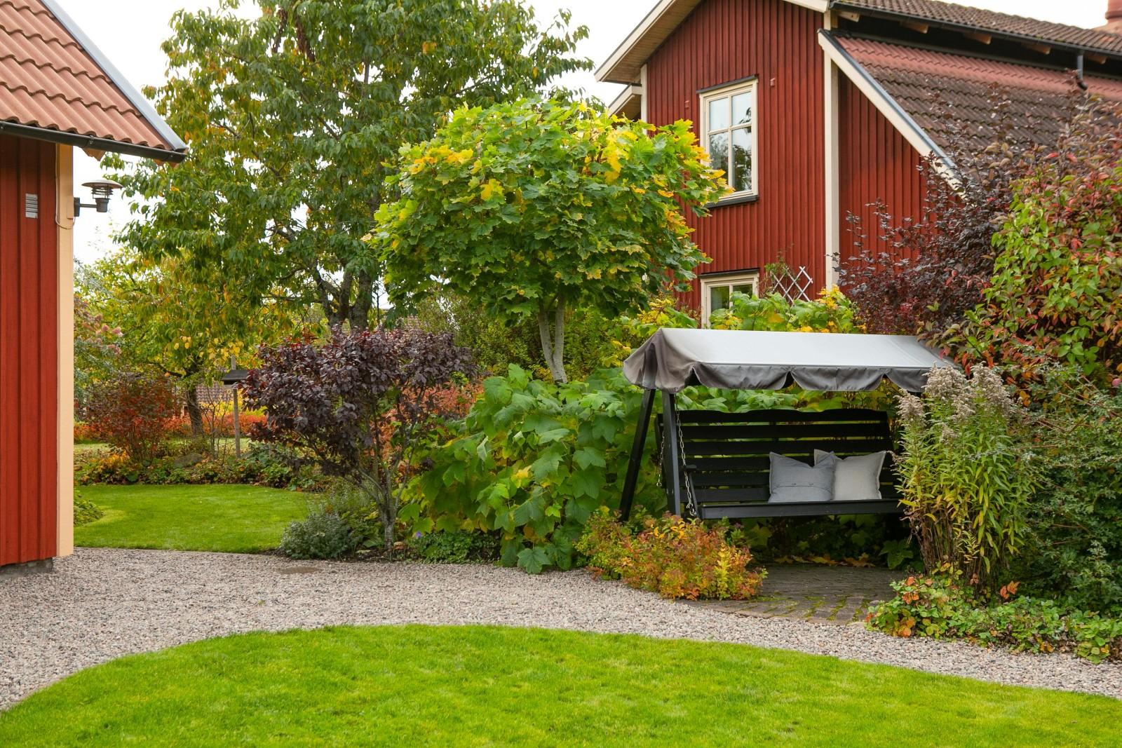 Trädgård baksida och uteplats..