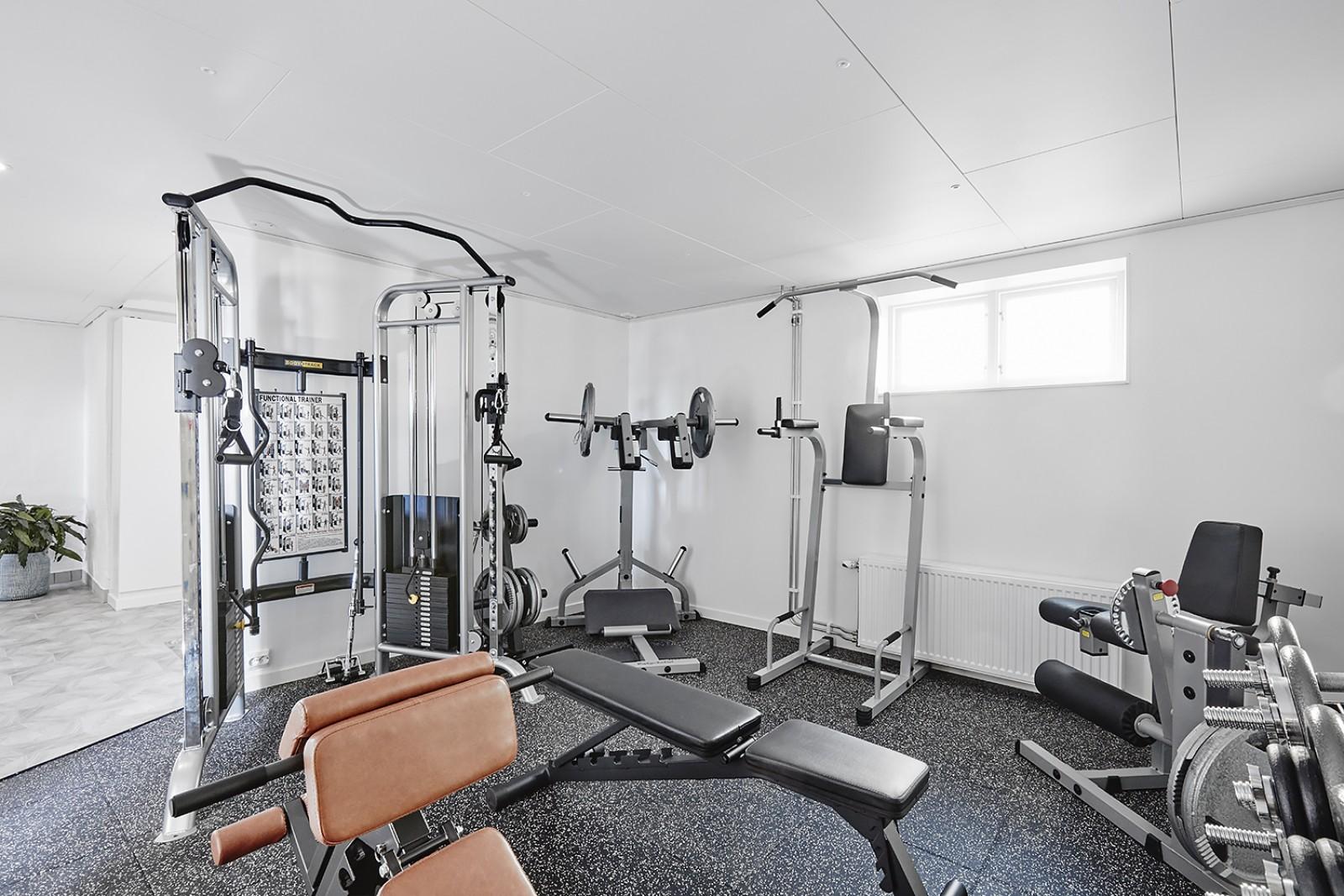 Gym..